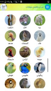 اسکرین شات برنامه صدای واقعی حیوانات 4
