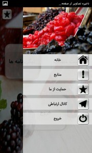اسکرین شات برنامه لواشک(انواع لواشک های خوشمزه) 5