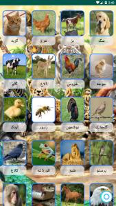اسکرین شات برنامه صدای حیوانات+ترانه های کودکانه 1