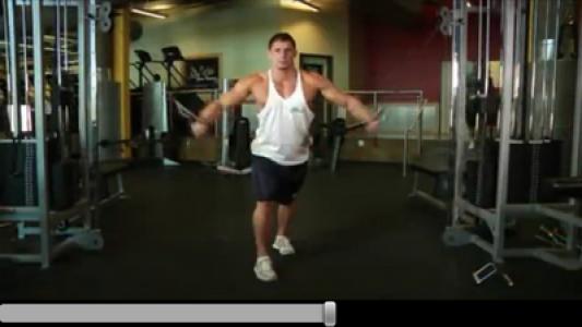 اسکرین شات برنامه آموزش کامل بدنسازی (فیلم) 8