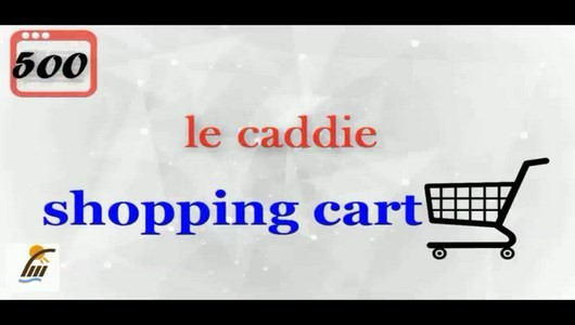 اسکرین شات برنامه آموزش 500 لغت رایج در زبان فرانسوی 10