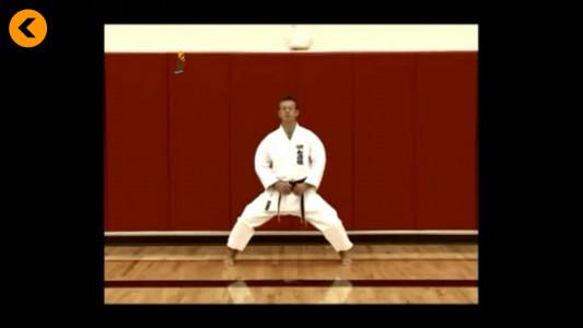 اسکرین شات برنامه آموزش کاراته 4