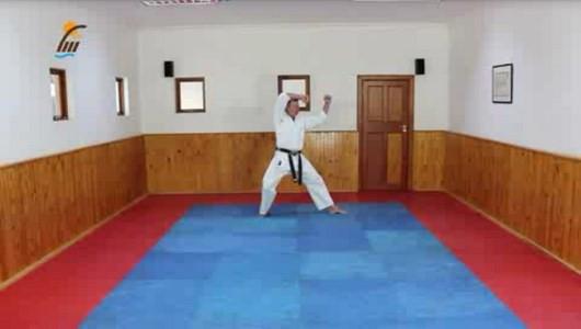 اسکرین شات برنامه آموزش کاتا سبک شوتوکان کاراته 5