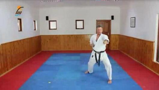 اسکرین شات برنامه آموزش کاتا سبک شوتوکان کاراته 9