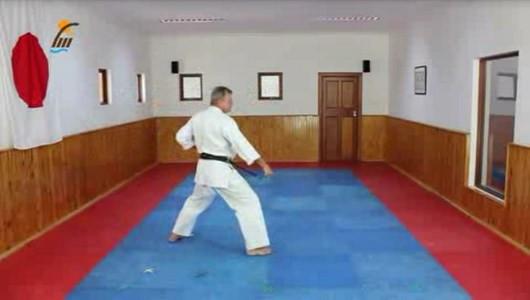 اسکرین شات برنامه آموزش کاتا سبک شوتوکان کاراته 2