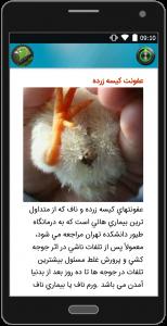 اسکرین شات برنامه دنیای پرندگان 1