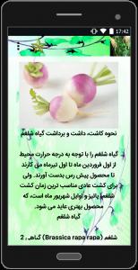 اسکرین شات برنامه آموزش کشاورزی سبزیجات 4