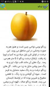 اسکرین شات برنامه خواص میوه ها 4